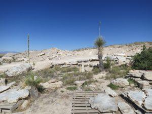Visit to a Gypsum Quarry